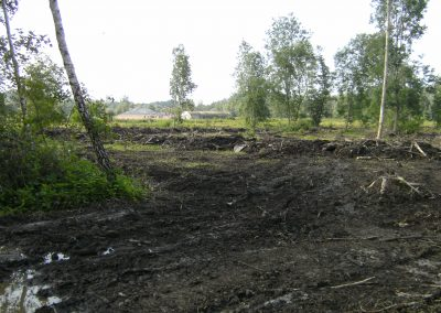 2013 Bomenkap 04